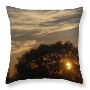 Sunset At The Oasis Throw Pillow by Joan Carroll