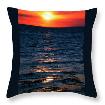 Throw Pillow featuring the photograph Sunset Denmark Samsoe Island by Colette V Hera  Guggenheim