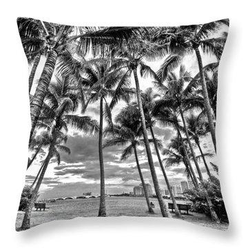 Sunset Grove At Palm Beach Throw Pillow