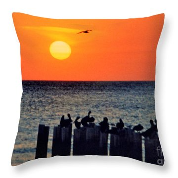 Throw Pillow featuring the photograph Sunset In Florida by Lydia Holly