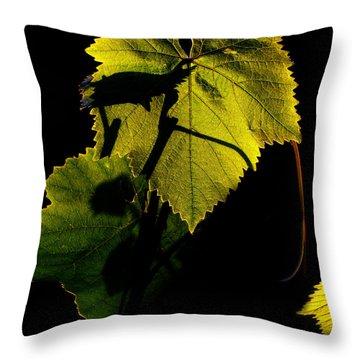 Sunset In My Garden Throw Pillow by Eena Bo