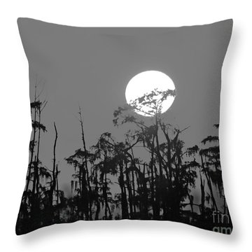 Throw Pillow featuring the photograph Sunset In Swamp by Luana K Perez