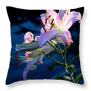 Sunset Lily Throw Pillow by Patrick Witz