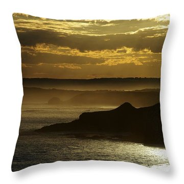 Sunset Mist Throw Pillow by Blair Stuart