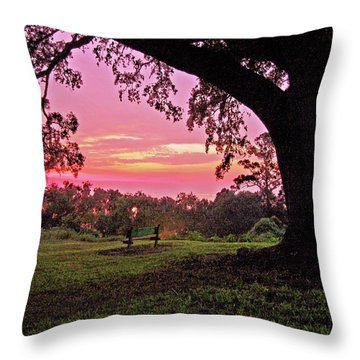 Sunset On The Bench Throw Pillow by Michael Thomas