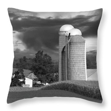 Sunset On The Farm Bw Throw Pillow