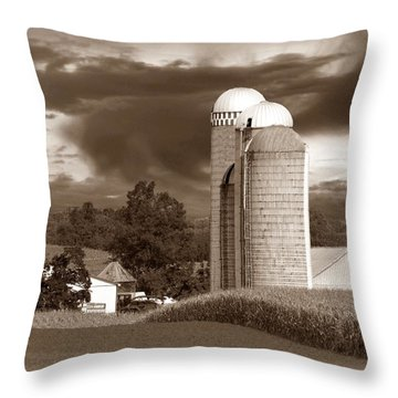 Sunset On The Farm S Throw Pillow by David Dehner