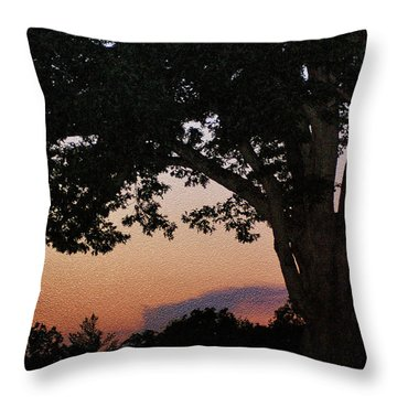 Sunset Over A Witness Tree Throw Pillow by Dave Sandt