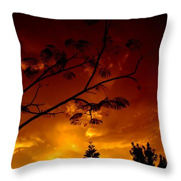 Sunset Over Florida Throw Pillow