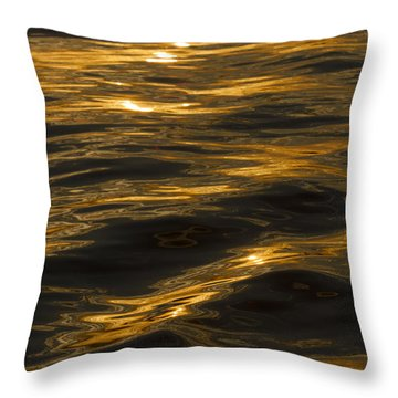 Sunset Reflections Throw Pillow by Dustin K Ryan