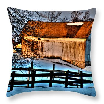 Throw Pillow featuring the photograph Sunset Reflects by Janice Adomeit