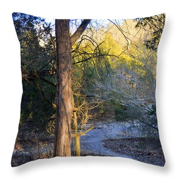 Sunset Tree Throw Pillow by Marty Koch