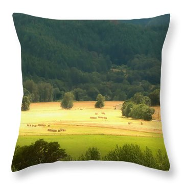 Sunshine In The Valley Throw Pillow by Katie Wing Vigil