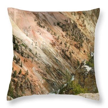 Throw Pillow featuring the photograph Sunshine On Grand Canyon In Yellowstone by Living Color Photography Lorraine Lynch