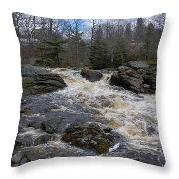 Throw Pillow featuring the photograph Surry Falls by Francine Frank