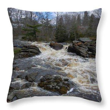 Surry Falls Throw Pillow