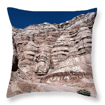 Throw Pillow featuring the photograph Survival In The Wilderness by Karen Lee Ensley
