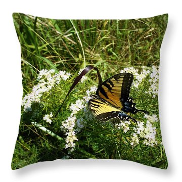 Swallow Tail  Throw Pillow by Skip Willits
