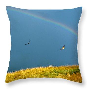 Swallows Under A Rainbow Throw Pillow by Thomas R Fletcher
