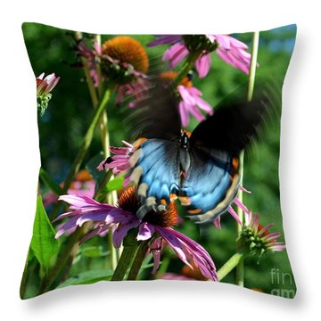 Swallowtail In Motion Throw Pillow by Sue Stefanowicz