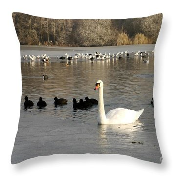 Swan And Ice Throw Pillow by John Chatterley