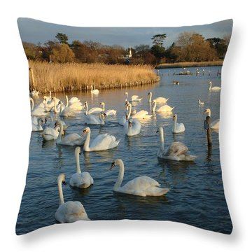 Throw Pillow featuring the photograph Swan Lake by Katy Mei