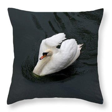 Throw Pillow featuring the photograph Swan On Black Water by Les Palenik