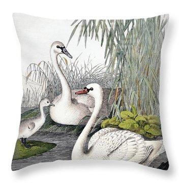 Swans, C1850 Throw Pillow by Granger