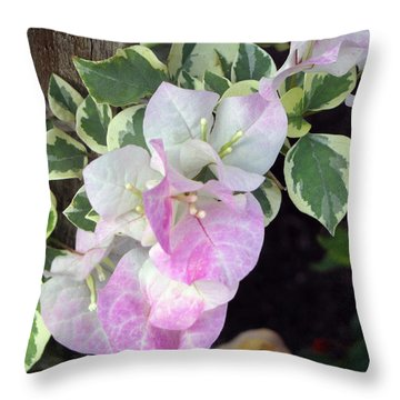 Sweet Bougy Throw Pillow by Debi Singer