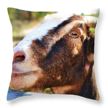 Throw Pillow featuring the photograph Sweet Goat by Mary Zeman