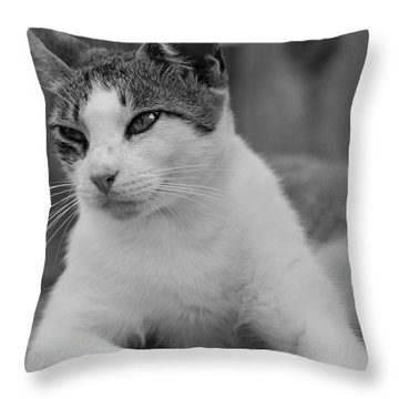 Sweet Life Throw Pillow by Kim Henderson
