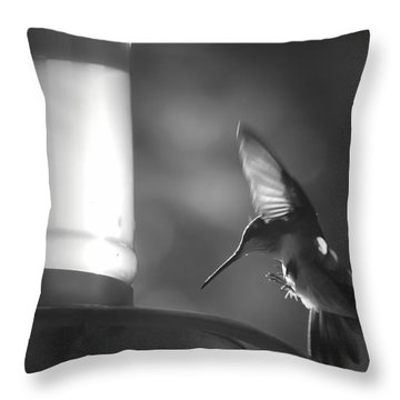 Sweet Light Throw Pillow