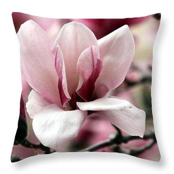 Sweet Magnolia Throw Pillow by Elizabeth Winter