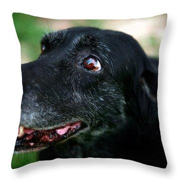 Throw Pillow featuring the photograph Sweet Mariah by Lon Casler Bixby