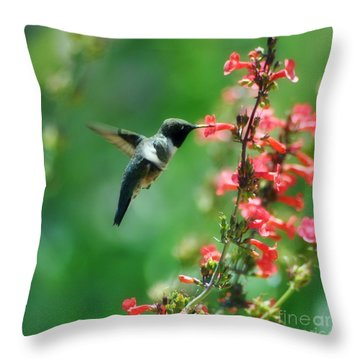 Sweet May Throw Pillow