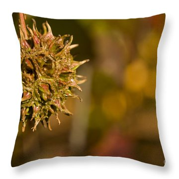 Sweetgum Seed Pod Throw Pillow by Heather Applegate