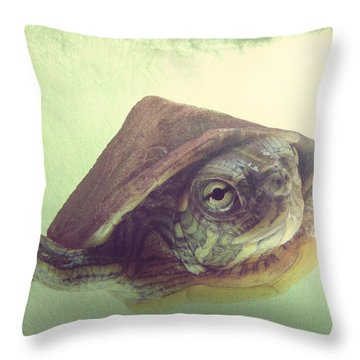 Swimming Lesson Throw Pillow by Amy Tyler