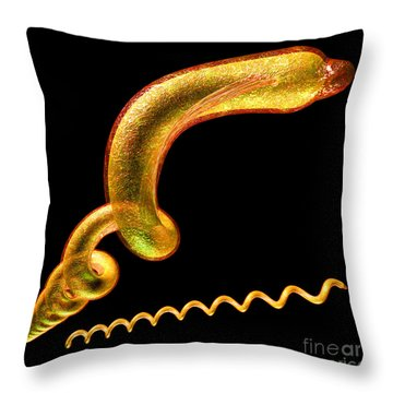 Throw Pillow featuring the digital art Syphilis by Russell Kightley