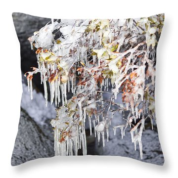 Tahoe Bush Icicles Throw Pillow