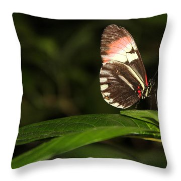 Take A Pose Throw Pillow