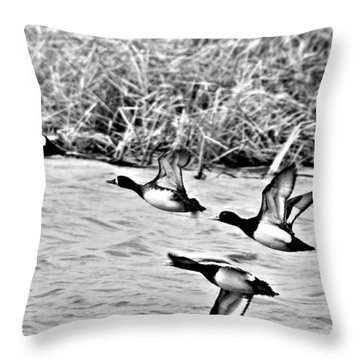Throw Pillow featuring the photograph Take Flight No. 2 In Black And White by Janice Adomeit