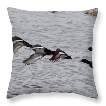 Throw Pillow featuring the photograph Take Flight No. 4 by Janice Adomeit