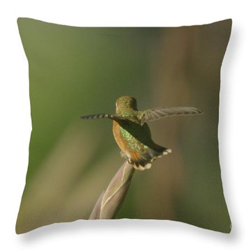 Take Off  Throw Pillow by Jeff Swan