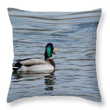 Throw Pillow featuring the photograph Talking Mallard by Mark McReynolds