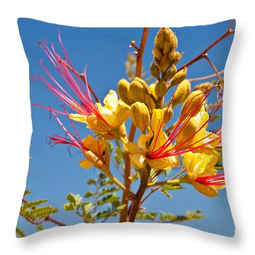 Tall And Bright Throw Pillow by Bob and Nancy Kendrick