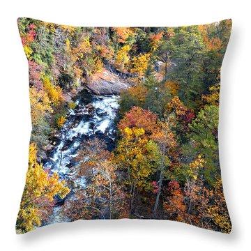 Tallulah River Gorge Throw Pillow by Susan Leggett