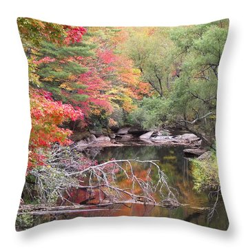 Tanasee Creek In The Fall Throw Pillow