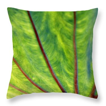 Taro 1 Throw Pillow