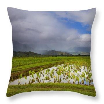 Taro Storm Throw Pillow by Mike  Dawson