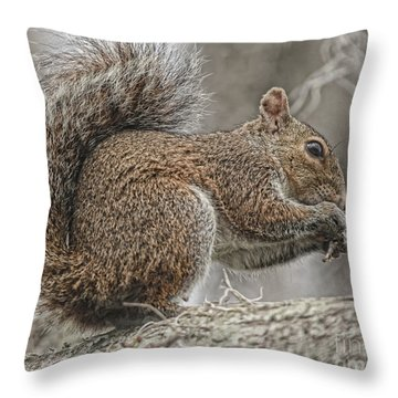 Tasty Tidbits Throw Pillow by Deborah Benoit